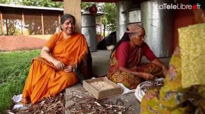 Vandana Shiva guerre des graines