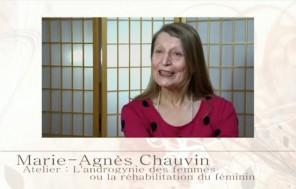 Video Cut Chauvin